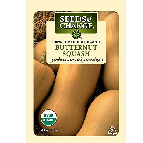 Seeds of Change Certified Organic Butternut Winter Squash