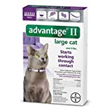 Advantage Pet Care Flea Control for Cats and Kittens Over 9 Lbs 6 Pack