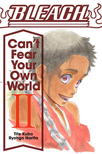 Bleach: Can't Fear Your Own World, Vol. 2