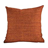DKISEE Linen Blend Decrotive Pillow Covers Burnt Orange, Rough Texture Close-Up Thick Fabric Image Print Country Living Rustic Style, Burnt, Printed Pillow with Insert & Hidden Zipper 24x24 Inches