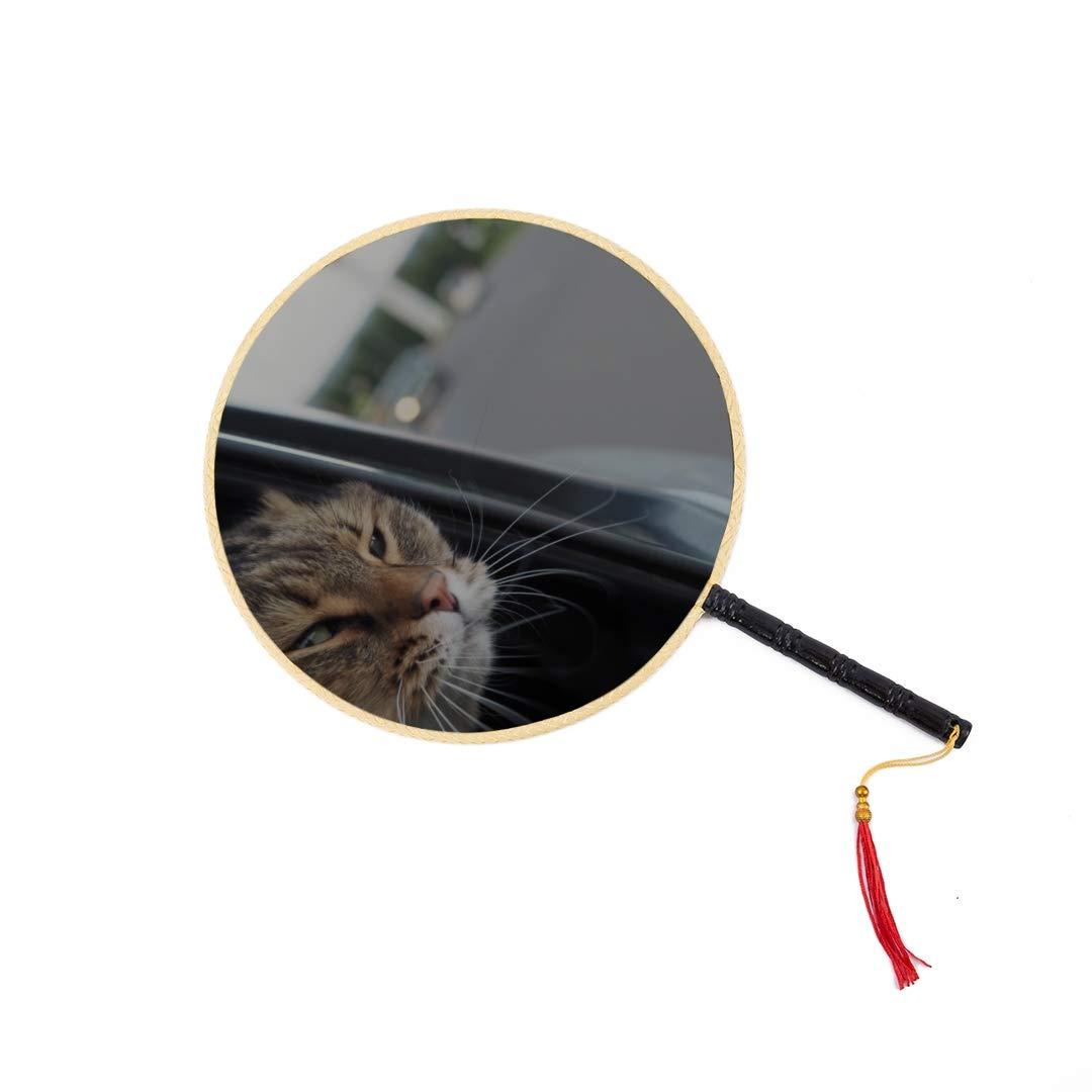 Un gato blanco y negro acostado junto al lago Abanico chino antiguo Abanico clásico de padel Abanico de baile Abanico compacto Abanico de mano Abanico personal personalizado Abanico chino Niños: Amazon.es: Hogar
