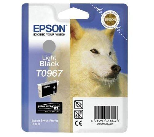 Epson t096740/10Stylus Photo R2880Inkjet/Tintenstrahldrucker Wasserfilterpatrone