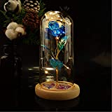 Galaxy Rose, Beauty and The Beast Rose, Led Light String on The Colorful Flower,Preserved Rose in A Glass Dome,Unique Gifts for Women, Christmas, Wedding,Valentine's Day, Anniversary (Blue Rose)