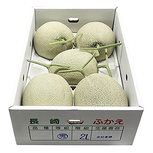 長崎県産 アールスメロン 秀品 4〜5玉入り (箱)