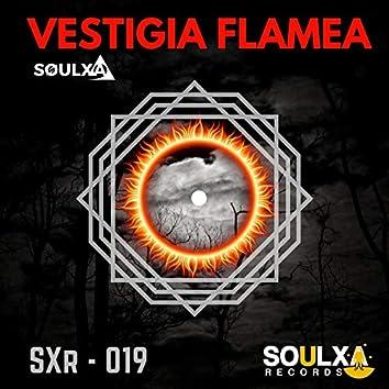 Vestigia Flamea