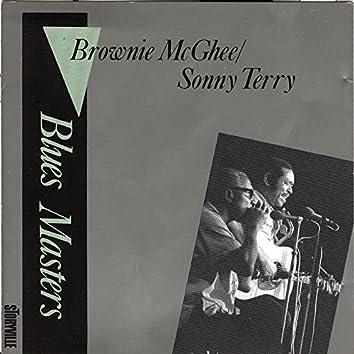 Blues Masters Vol. 5