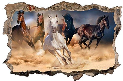 Pferde Rennen Pferd Tierwelt Wandtattoo Wandsticker Wandaufkleber D0970 Größe 70 cm x 110 cm