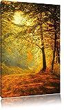Pixxprint Wald im Herbst, Format: 120x80 auf Leinwand, XXL