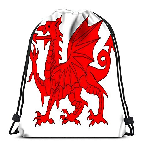 Lsjuee Backpack Drawstring Bag The Welsh Dragon Isolayed Over White