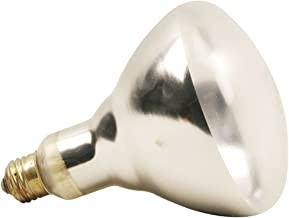 White Food Warming Lamp With Safety Coat 120V