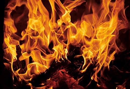 Invierno ladrillo Chimenea leña Fuego ardiente Navidad decoración del hogar Rural Fondos fotográficos fotografía de Fondo Estudio fotográfico A3 2,7x1,8 m
