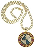 GWOOD The World is Yours Metal Pendant with 36 Inch Long Inlaid Link Necklace (Gold Color with Fuchsia)