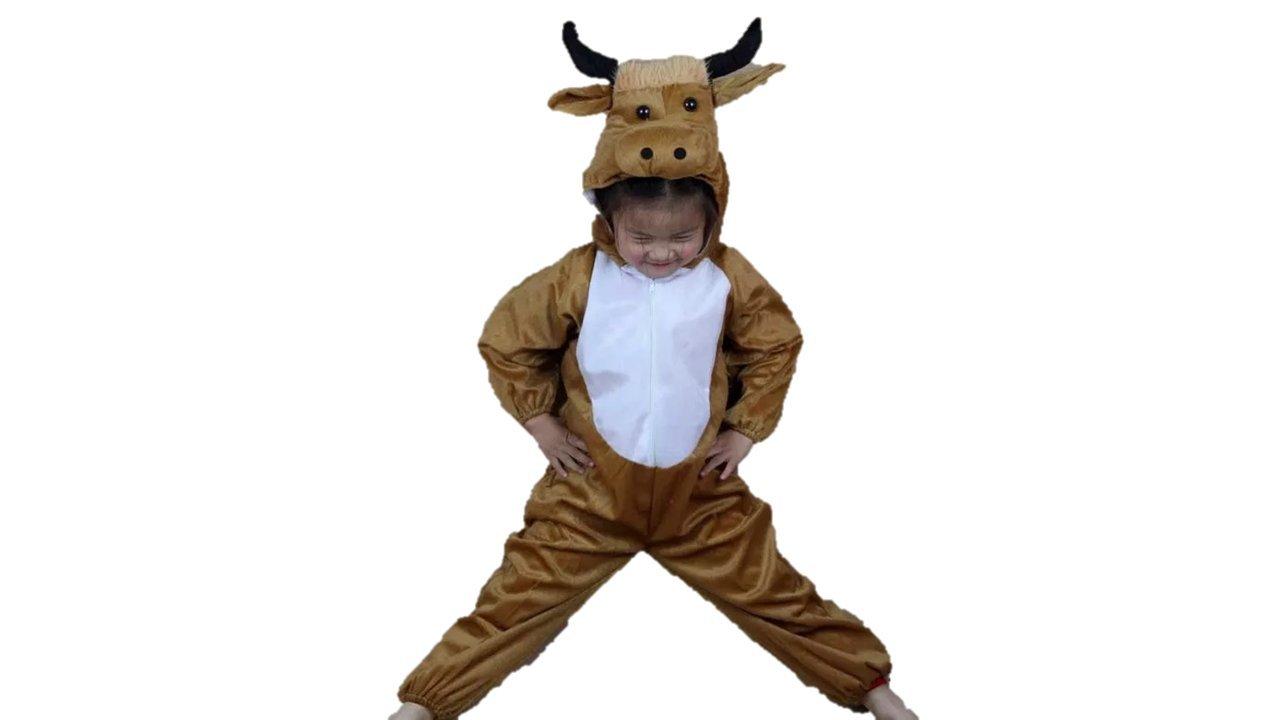 Matissa Niños Disfraces de Animales Niños Niñas Unisex Disfraces ...