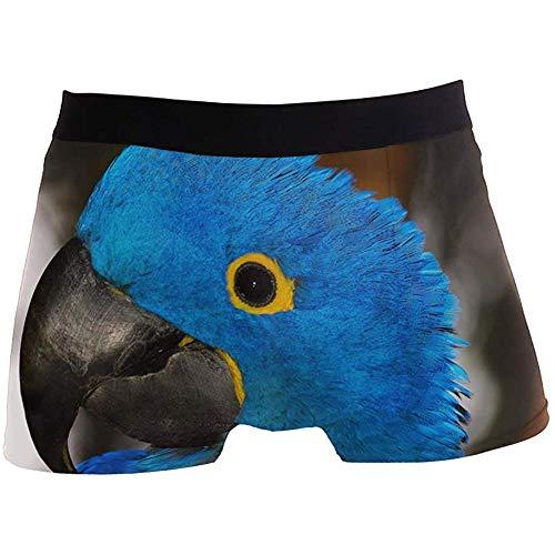 Adamitt Hombres Calzoncillos Boxer Loro Azul pájaro Pico Ropa Interior para niños...