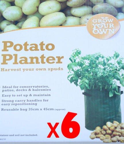 6 x Ardisle per patate vaso per coltivare le patate borsa sacco per patate Spud kcbeans vaso per piante (40 litri cm 35,56 cm x 45,72 cm)