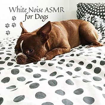 White Noise ASMR for Dogs