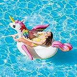 Adult Pool Floats