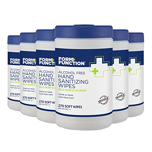 Form + Function Alcohol-Free Hand Sanitizing Canister Wipes, 270 wipes per Pack, Pack of 6
