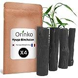 Orinko BINCHOTAN japonés de Hyuga X4 (100G, 25G x 4)   Carbón activo BINCHOTAN tradicional del Japón (Miyazaki Pref.) para purificación de agua en Carafe...