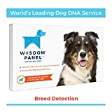 Wisdom Panel 3.0 - Test del Dna Canino, Kit per Test del Dna del Cane per Informazioni su Razze e Animali