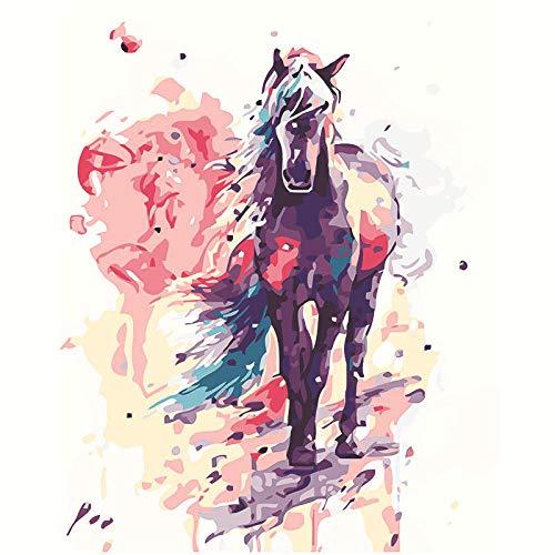 DIY Pintura por Números para Adultos, Pintura al óleo sobre Lienzo Pintar por Numeros para Adultos Principiantes - Navidad Regalo -Caballo loco acuarela -40x50cm