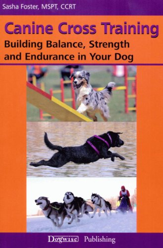 Canine Cross Training: Building Balance, Strength and Endurance in Your Dog (English Edition)