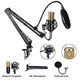 HBBOOI Set micrófono de condensador for grabación en estudio, micrófono de condensador de entrega (plata) Scherenarmständer suspensión ajustable con el montaje de choque, soporte de montaje, tarjeta d