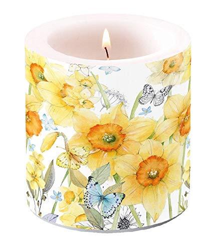 Miss Lovely Stumpen-Kerze Windlicht Oster-Kerze Narzissen/Osterglocken gelb mit Schmetterlingen Oster-Fest Oster-Deko Ostern Tisch-Dekoration Kerze Frühlings-Dekoration Frühling
