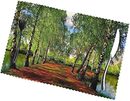 Spring Lake Landscape Tischsets 4er-Set für 12x18 Zoll Esstisch Hitzebeständige waschbare Tischsets Polyester Dekorative Küchentischmatten und leicht zu reinigen