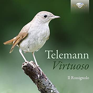 Telemann: Virtuoso