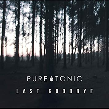 Last Goodbye