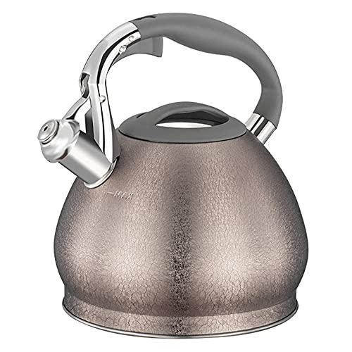Tetera clsica para induccionhervidor de agua gas Kitchen...