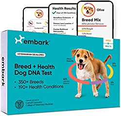 Save on Embark Vet Breed and Health Dog DNA Test for 350 plus Breeds