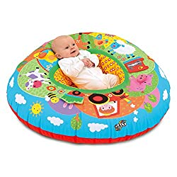 Playnest is a fabric covered inflatable ring that provides vital support for baby during both rest and play A self-contained play environment for babies and toddlers with textures, patterns and sounds to explore Multi-sensory features are incorporate...