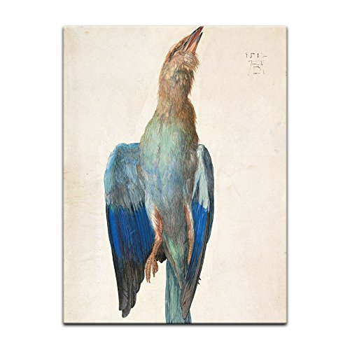 Kunstdruck Poster - Albrecht Dürer Blaue Krähe 30x40 cm ca. A3 - Alte Meister Bild ohne Rahmen