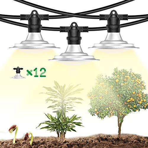 Espird Plant Grow String Light Waterproof for Outdoor Greenhouse,Growing Heat Lamps Full Spectrum for Indoor Outdoor Succulent Plants,String Sunlight Led Lamps for Large Area Farm (12 Light)
