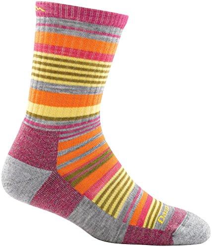 Darn Tough Merino Wool Sierra Stripe Micro Crew Light Cushion Sock - Kid's Light Gray Large