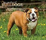 Bulldogs – For the love of 2020 - 16-Monatskalender mit freier DogDays-App: Original BrownTrout-Kalender - Deluxe [Mehrsprachig] [Kalender] (Deluxe-Kalender)