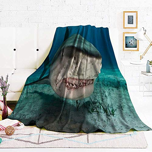 Lovesex Throw Blanket Tiger Shark 60 x 50 inch Ocean Blanket Flannel Blankets Home Cute Soft