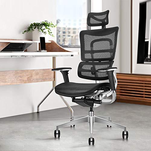 GICLAIN Ergonomic Mesh Office Manager Chair|Liftable Backrest Height Adj|Backrest Tilt Angle Adjustment|All-Aluminum Alloy Skeleton|Headrest Adj |Seat Depth Adj