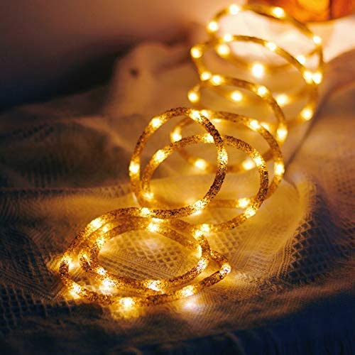 JASHIKA Holiday LED Fairy Rope String Lights Decorated by Golden Glitter with Timer and Multi product image