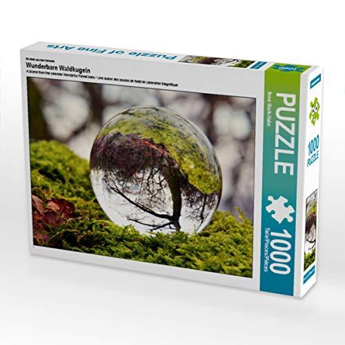 CALVENDO Puzzle Wunderbare Waldkugeln 1000 Teile Lege-Größe 64 x 48 cm Foto-Puzzle Bild von Ilona Ettingshausen