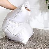 Pillow Downs