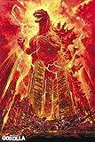 Mr.sign Godzilla Film Movie Blechschilder Vintage Metall