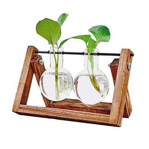 Houkiper Hölzerne Vase Dekoration, Vintage Hydroponik Pflanzenrahmen Vase Schreibtisch Dekoration Tischplatte Pflanze Bonsai Deco (2 x Glasflasche)