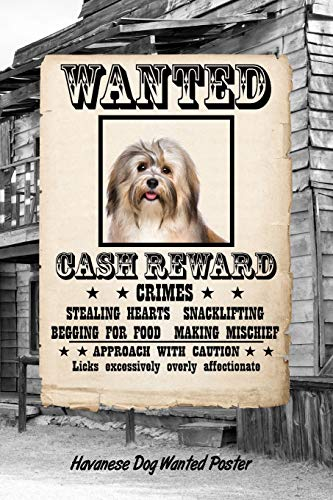 Havanese Dog Wanted Poster: Beer Tasting Journal Rate and Record Your Favorite Beers Collect Beer Name, Brewer, Origin, Date, Sampled, Rating, Stats ... meter, Note and Flavor wheel 120 pages 6'x9'