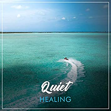 # 1 A 2019 Album: Quiet Healing