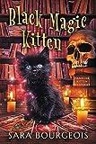 Black Magic Kitten (Familiar Kitten Mysteries Book 1) (Kindle Edition)
