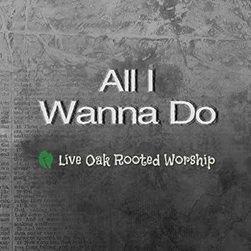 All I Wanna Do (Live)