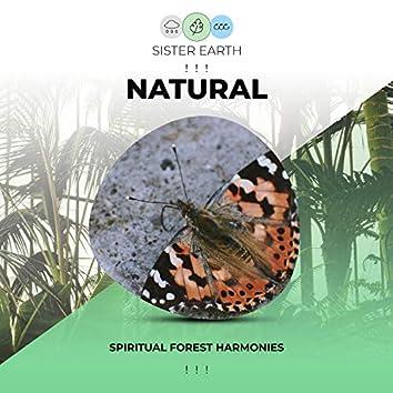 ! ! !  Spiritual Natural Forest Harmonies ! ! !
